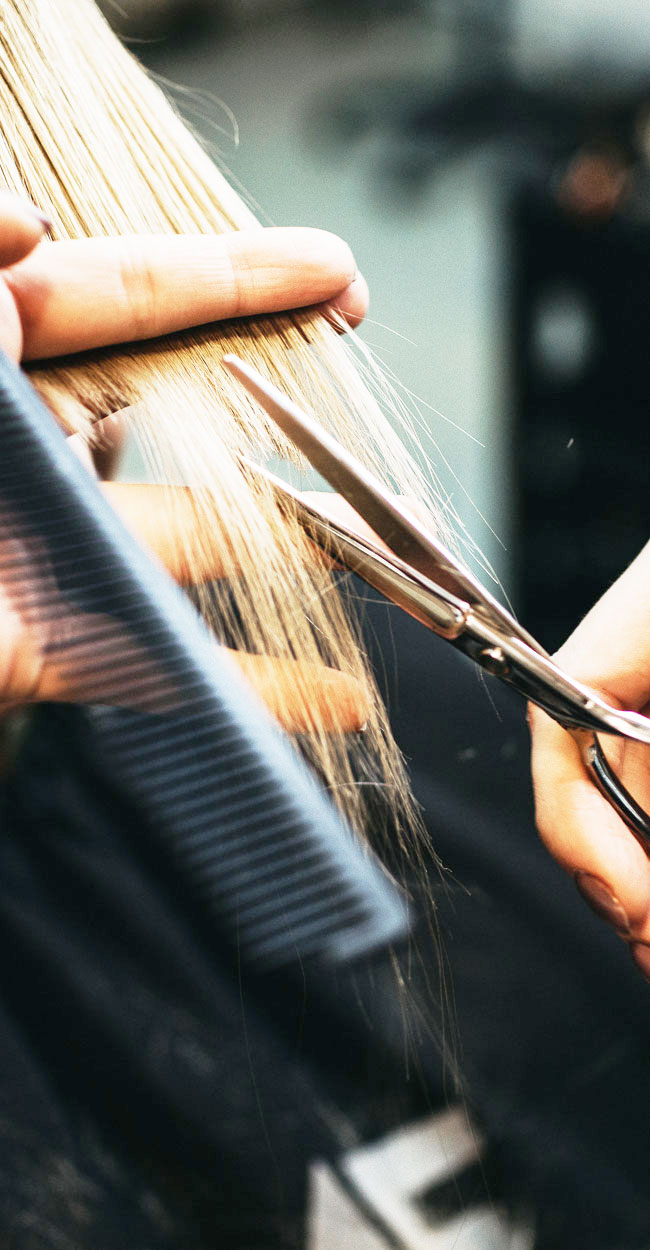Hair Cut, Color, and Style Services, woman getting her hair cut, close up of stylist's hands
